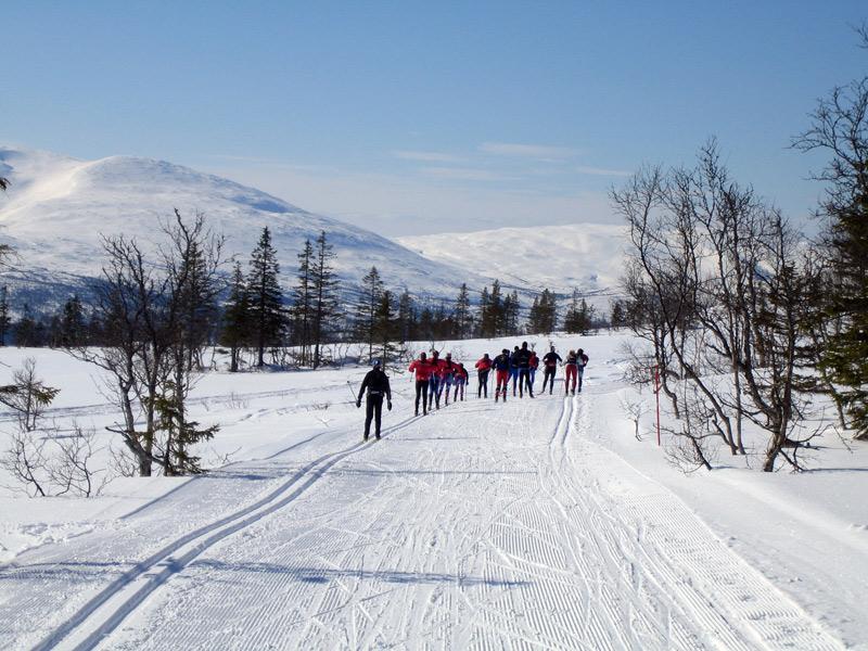 https://fasterskier.com/wp-content/blogs.dir/1/files/2009/02/sweden-trip.jpg