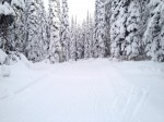 Opening Weekend at Sovereign Lake/Silver Star