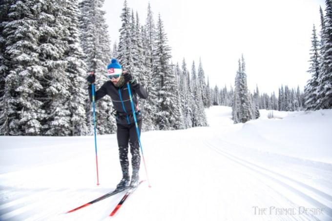 https://fasterskier.com/wp-content/blogs.dir/1/files/2018/01/Kequyen-Lam-Olympic-Lamstache-skate-skier4.jpg