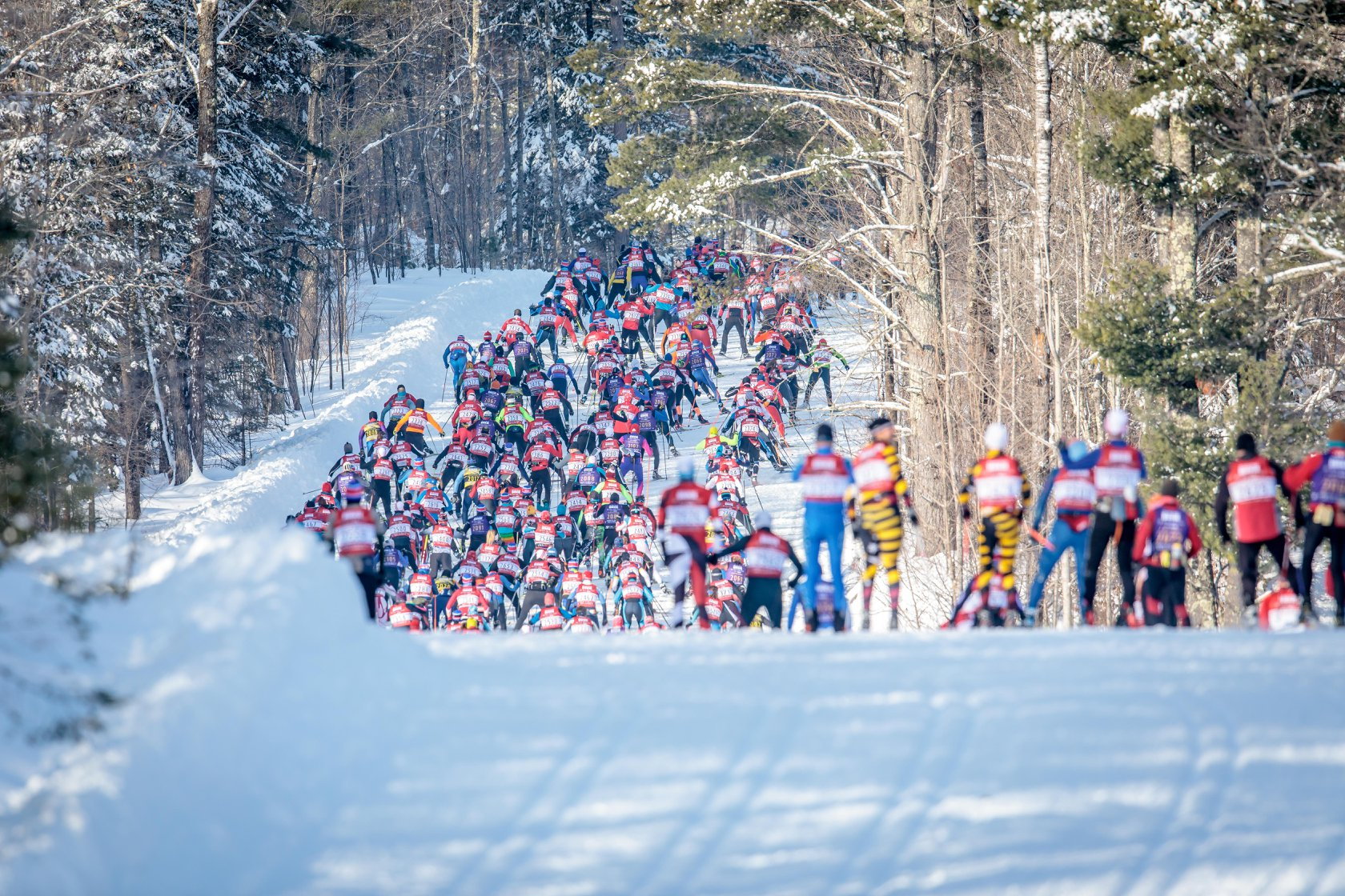 https://fasterskier.com/wp-content/blogs.dir/1/files/2018/03/Birke-Wave-2-American-Birkebeiner-Ski-Foundation-photo.jpg