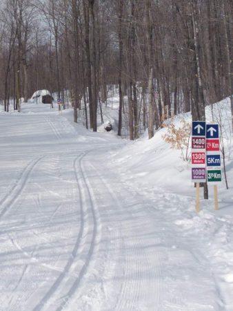 Nakkertok trails on March 5th, 2019. (Photo: Toni Scheier)