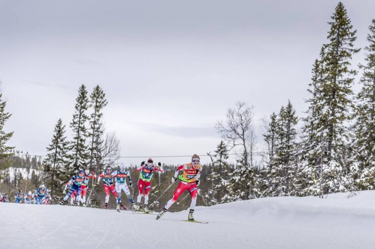 20.02.2020, Storlien-Meraker, Norway (NOR):<br /> Therese Johaug (NOR) - FIS world cup cross-country, mass women, Storlien-Meraker (NOR). www.nordicfocus.com. © Thibaut/NordicFocus. Every downloaded picture is fee-liable.