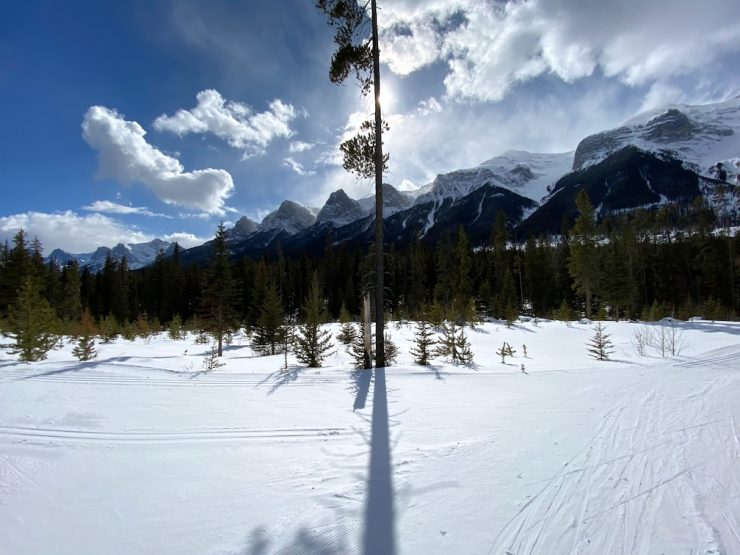 The Bow Trail has this little offshoot to see a 360 degree view. March 11, 2020.