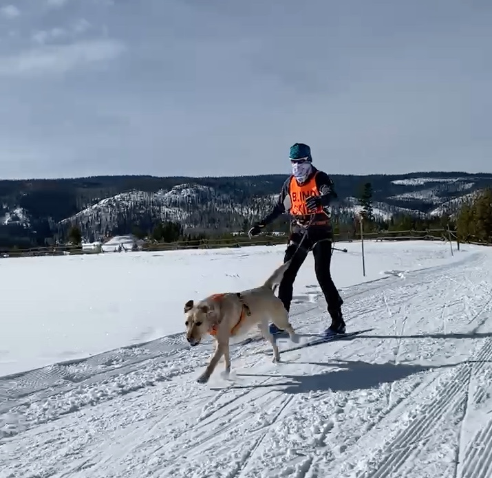 Nutrition: The Key To Endurance Sports For You And Your Furry Friend