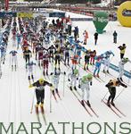 Marathons Headshot